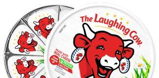 ăn phô mai con bò cười có béo không