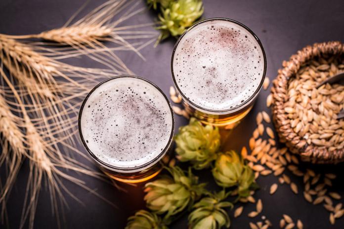 dinh dưỡng của bia